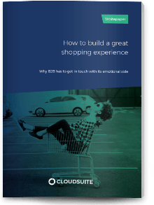 Whitepaper Hoe bouw je een succesvolle shopping experience?