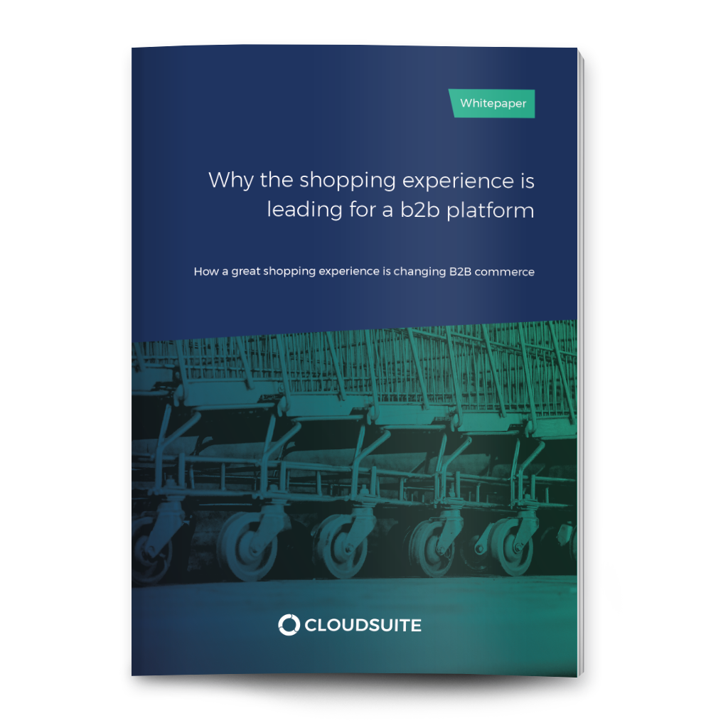 Why the shopping experience is leading for a B2B platform