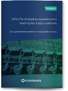 Whitepaper Why the shopping experience is leading for a B2B platform